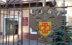 В России зафиксировали первый случай заболевания лихорадкой Зика