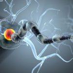 Ученые будут лечить рак с помощью малярии