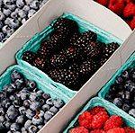 Регулярное потребление Бойзеновой ягоды может уменьшить остроту симптомов астмы