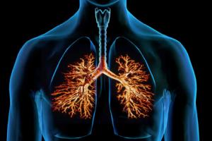 Советы от знахарей для лечения кашля и бронхита