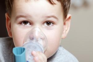 Выделения тропического паразита помогут победить астму