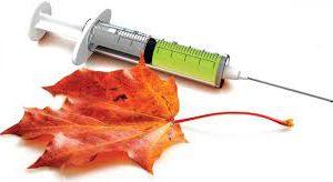 Спасает ли вакцинация от гриппа?