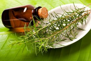 Масло чайного дерева и серебро: хорошие антисептики