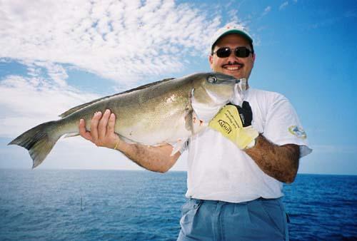 Как экипироваться для удачной рыбалки зимой.