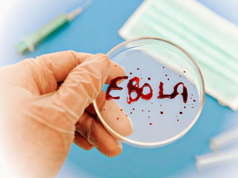 Вакцина против лихорадки Эбола показала 100% эффективность