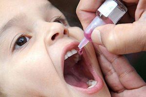 Доказана высокая эффективность пероральной формы ципрофлоксацина для терапии чумы