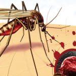 Дети Ганы, Кении и Малави будут привиты от малярии в рамках пилотного проекта