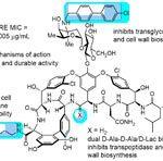 Фармакологи создали антибиотик повышенной мощности