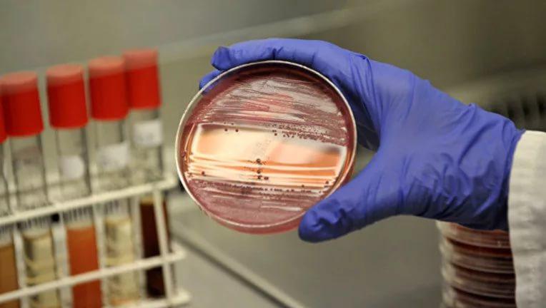 Украинские иммунологи предупреждают о вспышках инфекций в стране
