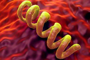 Проблема сифилиса опять актуальна