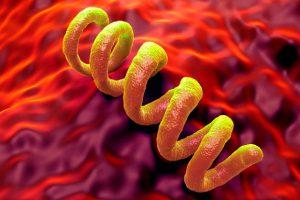 Венерическое заболевание: сифилис