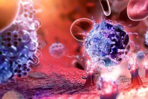 Поставлена под сомнение одна из основных догм иммунологии