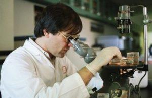 Ученые выяснили, как с помощью серебра и электричества уничтожать бактерии