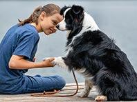 Домашние животные не укрепляют здоровье детей, показало исследование