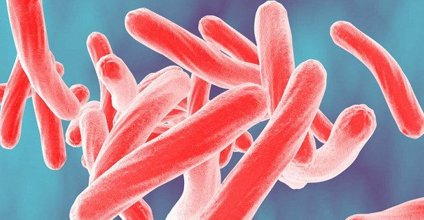 Риск заболевания туберкулезом легко предсказать с помощью анализа крови