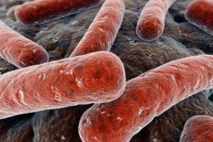 Генитальный туберкулёз — определение, клиника, диагностика и лечение