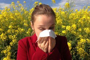 Как понять, что у вас аллергия на пыльцу