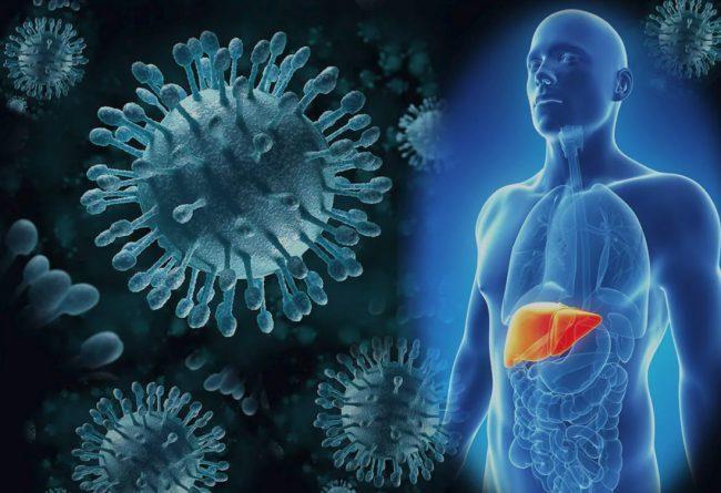 Способы заражения гепатитом С