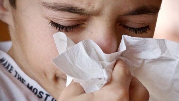 Врачи рассказали, какие продукты вредно употреблять при простуде