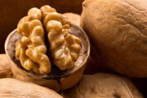 Врачи рассказали, как грецкий орех воздействует на организм