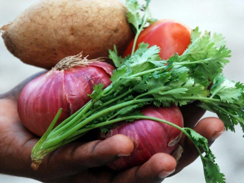 Врач: налегать на овощи и фрукты для поддержки иммунитета бессмысленно