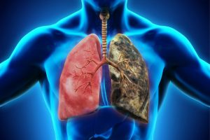 Препараты для диагностики туберкулёза, которые вводятся внутрикожно, безопасны