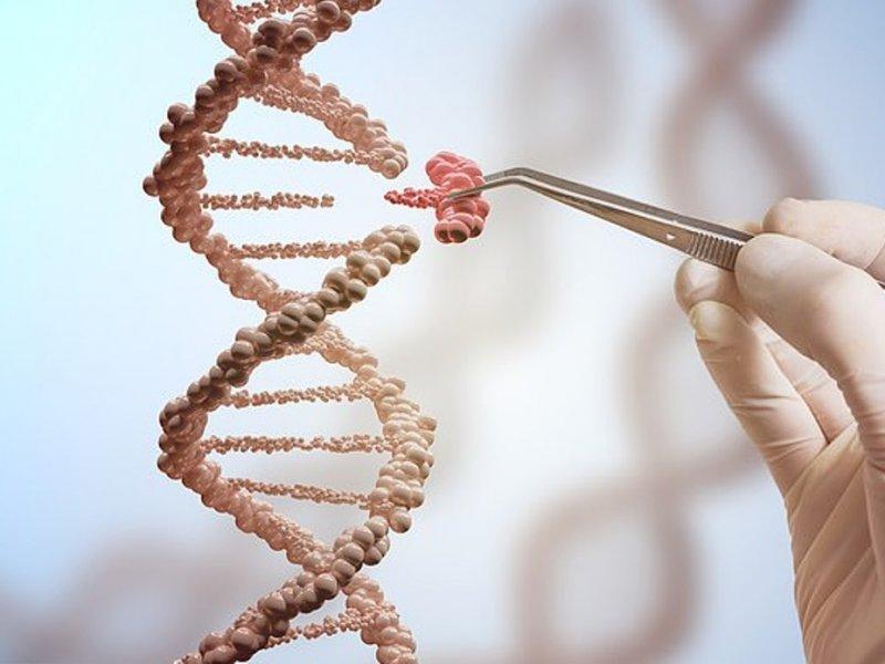 Программа CRISPR может распознавать вирусы за час