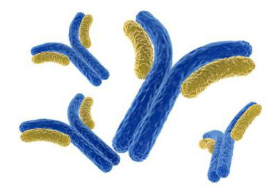 Что дало человечеству открытие иммунитета