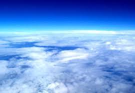Атмосфера Земли кишит фрагментами грибных клеток