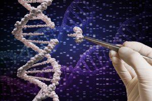 Генетики сумели исправить тяжелую форму диабета 1-го типа
