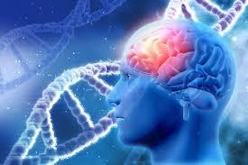 Приложение для знакомств по ДНК — амбициозный проект генетиков