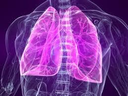 Диагностика и лечение туберкулеза