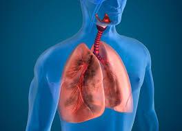 Инфекция поражает организм благодаря вдоху