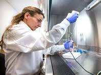 Генетики обнаружили ключ к лечению герпеса