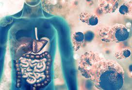 С приходом весны амурчанам следует особо опасаться острых вирусных кишечных инфекций