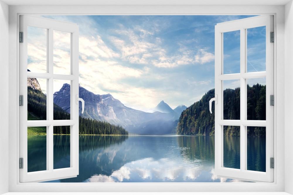 Какие выбрать окна?