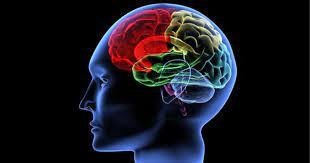 10 опасных для мозга привычек