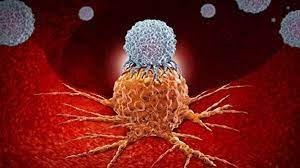 Что нужно знать об иммунотерапии рака: эффективность, риски и цена